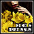 Echo/Narcissus FL